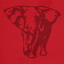 Elephant-(300)